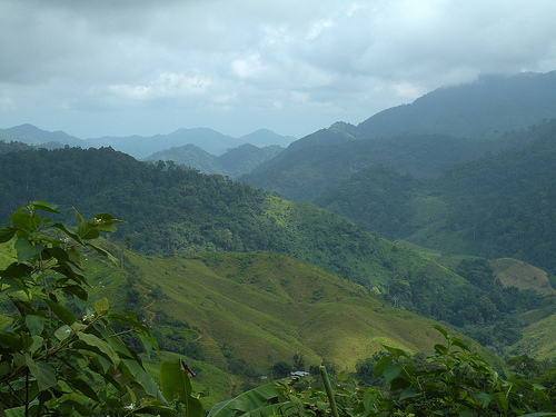Jungle trek to find a Lost City
