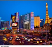 Sharks, Slotzilla and Museums- What to Do in Las Vegas Besides Gambling