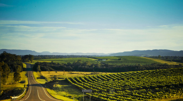 Where to Go to Enjoy the Best of South Australia's Food and Wine Culture