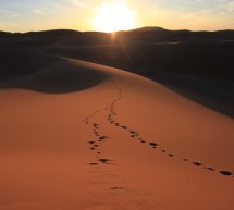 Marocco – Walking on the Sands of Sahara